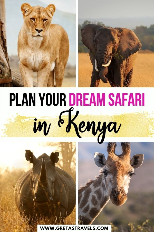 """Photo collage of lions, zebras, elephants and giraffes in Kenya with text overlay saying """"plan your dream safari in Kenya"""""""