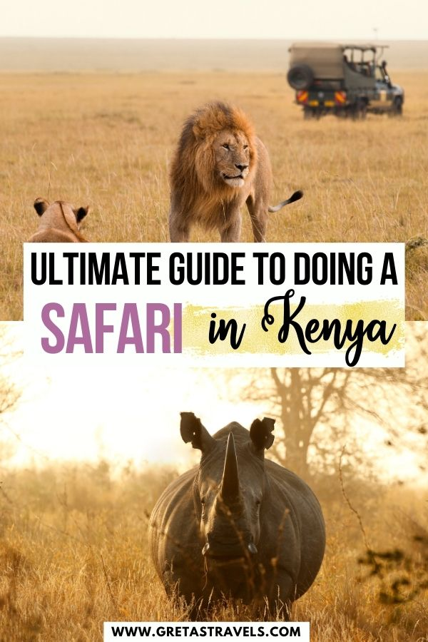 """Photo collage of a group of lions and a rhino with text overlay saying """"ultimate guide to doing a safari in Kenya"""""""