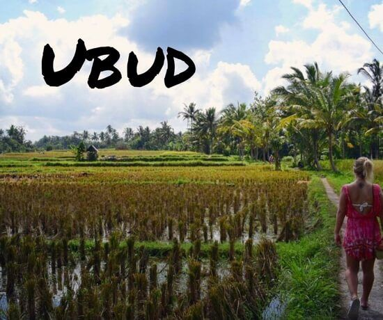 Ubud in one day