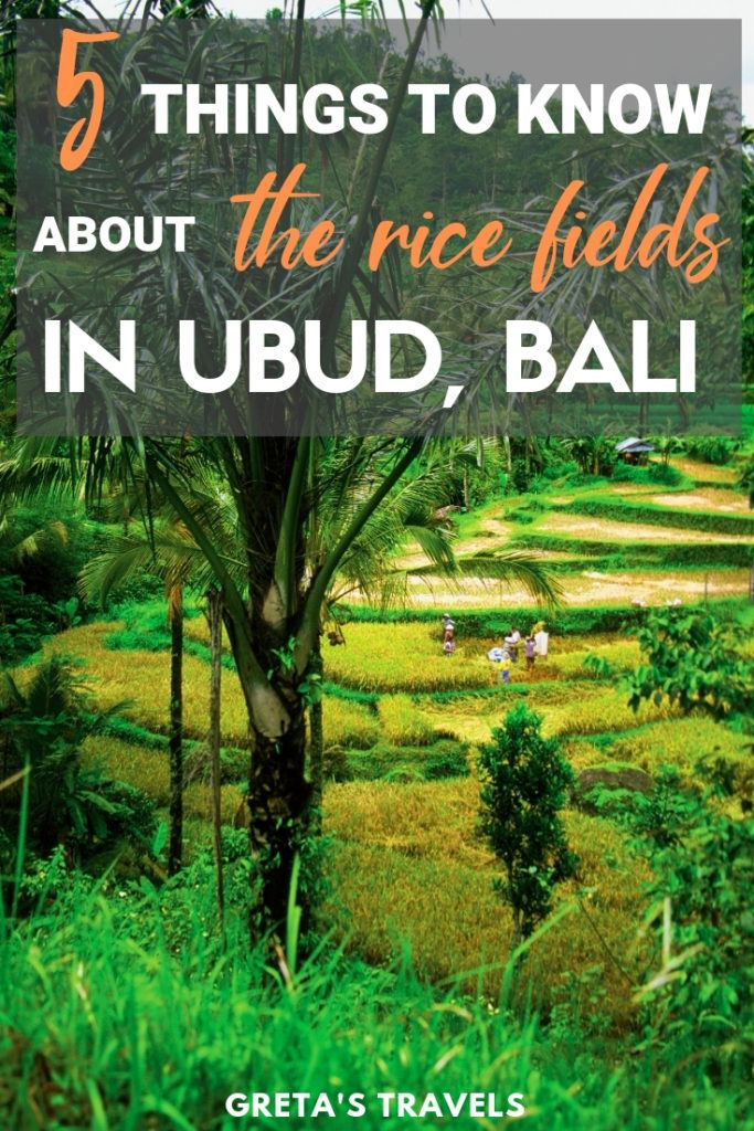 Tegalalang rice terrace in Ubud, Bali with text overlay