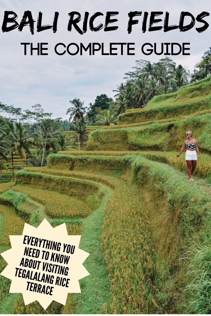 Tegalalang rice terrace in Ubud Bali, with text overlay