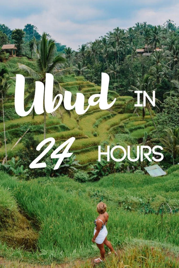 Find out how to spend one day in Ubud, Indonesia. With its rice fields, monkey forest and temples Ubud is known as Bali's cultural heart. Discover all the best things to do in Ubud if you only have 24 hours there. #ubud #bali #indonesia #monkeyforest #ricefields #asia