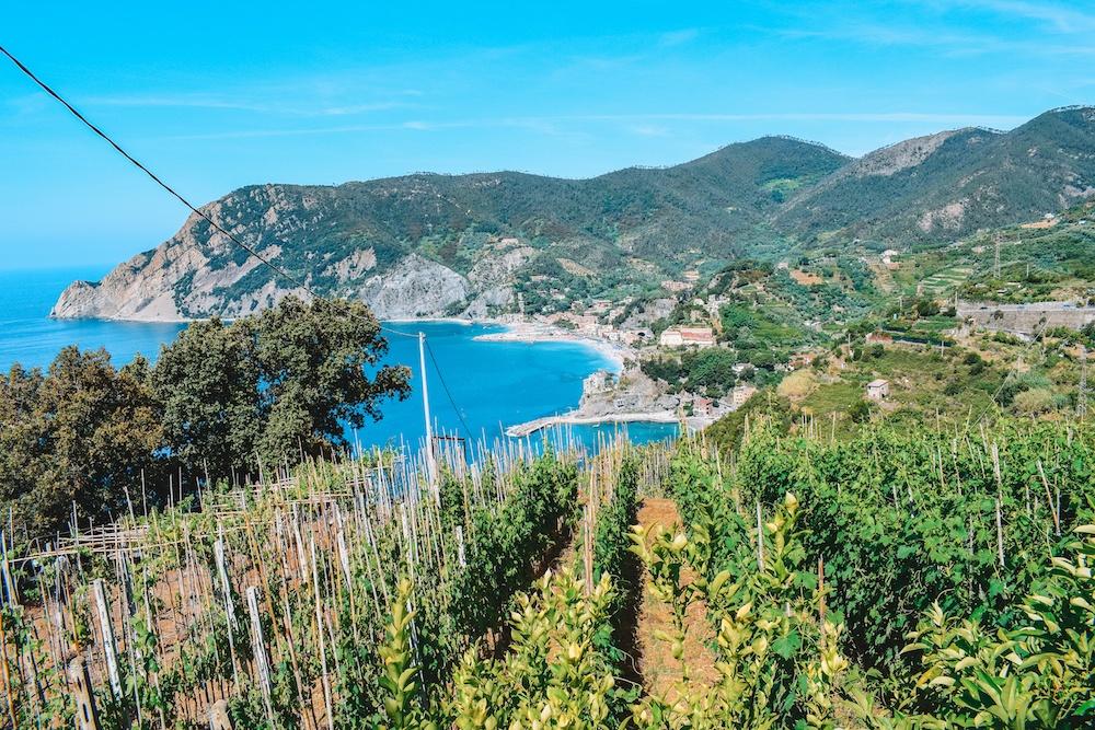 Wineries somewhere along the Sentiero Azzurro in Cinque Terre, with Monterosso in the distance