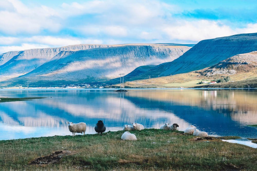 Reflections in the Westfjords in Iceland