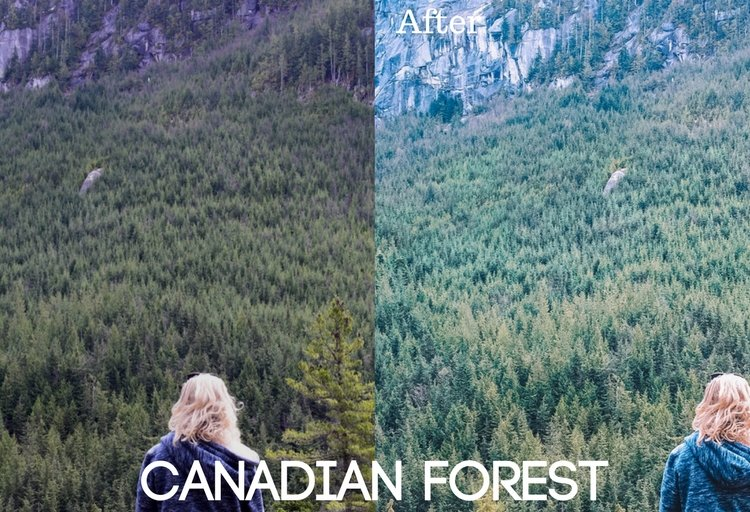 Canadian Forest Preset