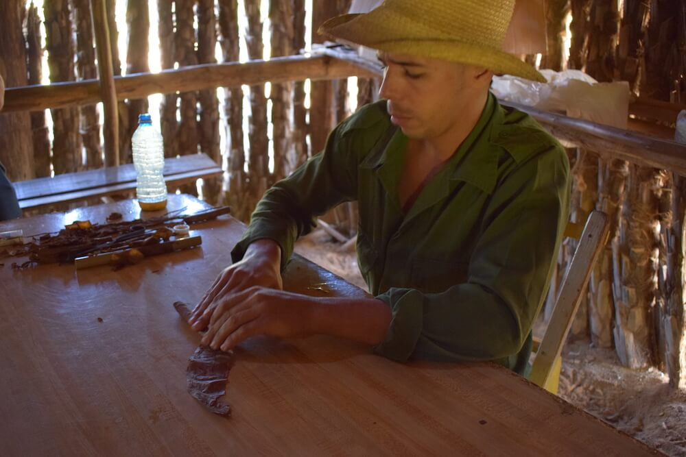 One of the tobacco farmers shows how they roll cigars