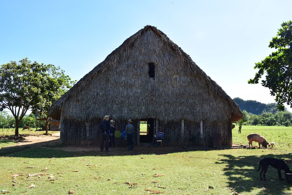 One of the many tobacco drying houses in the valley of Viñales