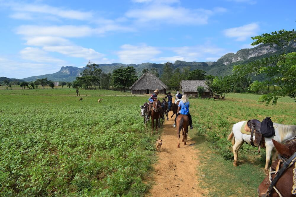 Horse riding in the valley Viñales