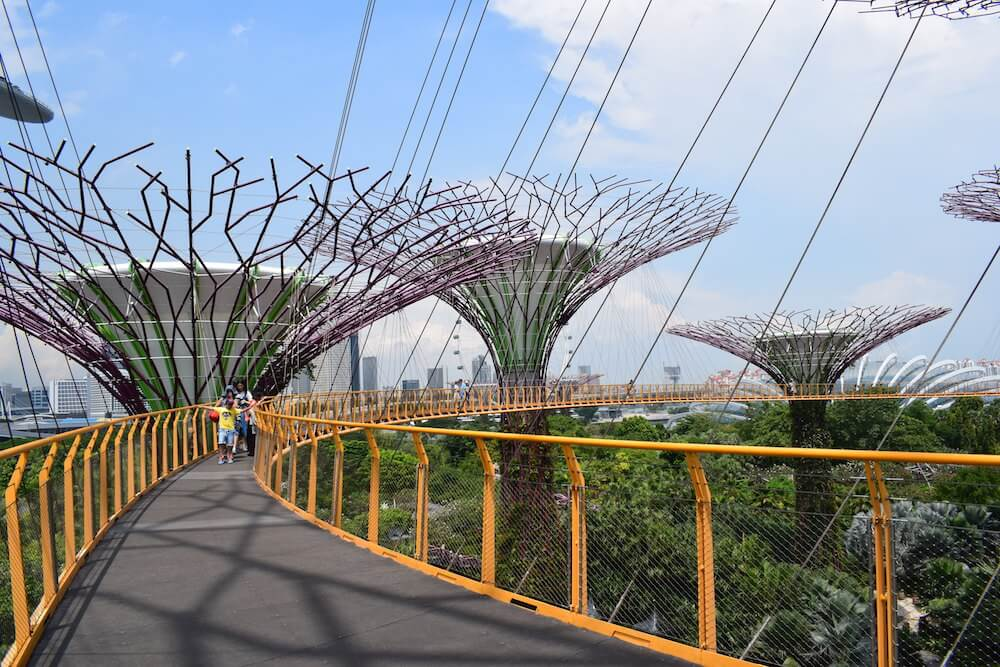 The OCBC Skyway, the suspended walkway in the Supertree Grove in Singapore