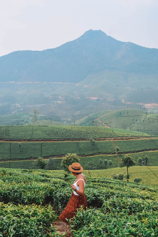 Dancing around the tea plantations of Munnar, India
