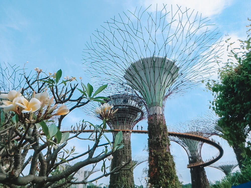 Gardens By The Bay, photo by The Munching Traveller
