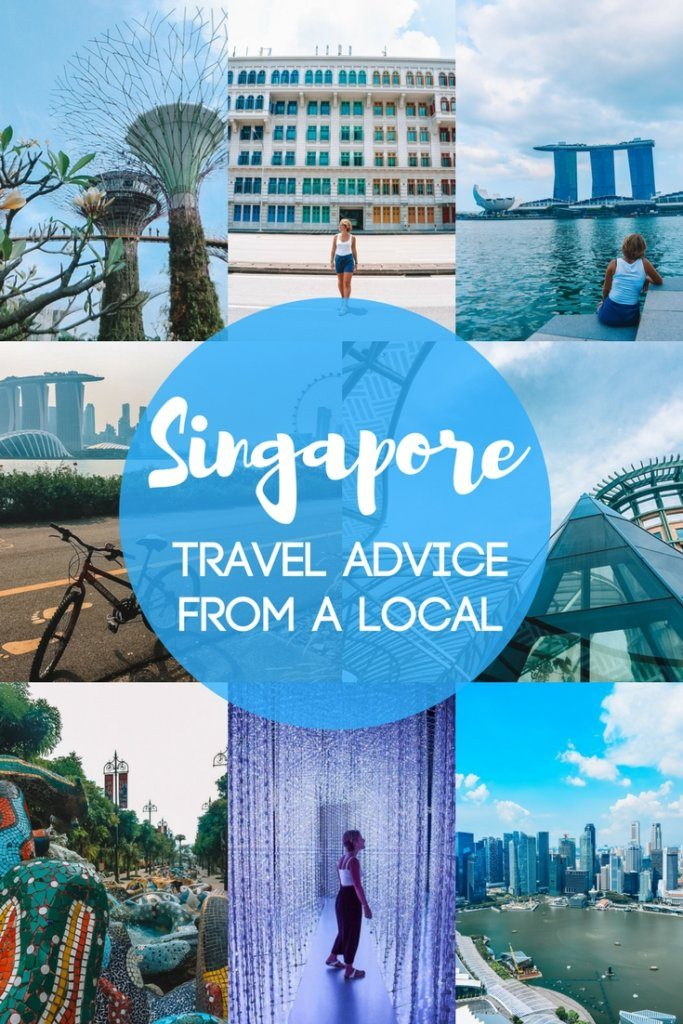 Planning a trip to Singapore? Find out the best things to do, where to eat, where to stay and much more! This local's travel guide will give you all the advice you need to plan your trip, including off the beaten track tips. #singapore #asia #likealocal #traveladvice
