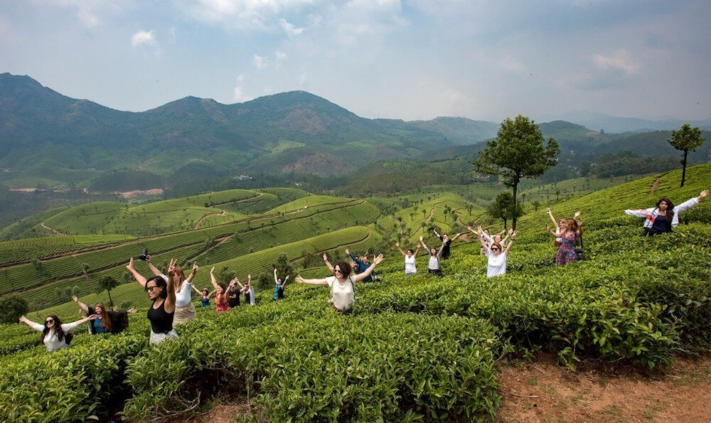 The Kerala Blog Express season 5 bloggers in the tea plantations of Munnar, India
