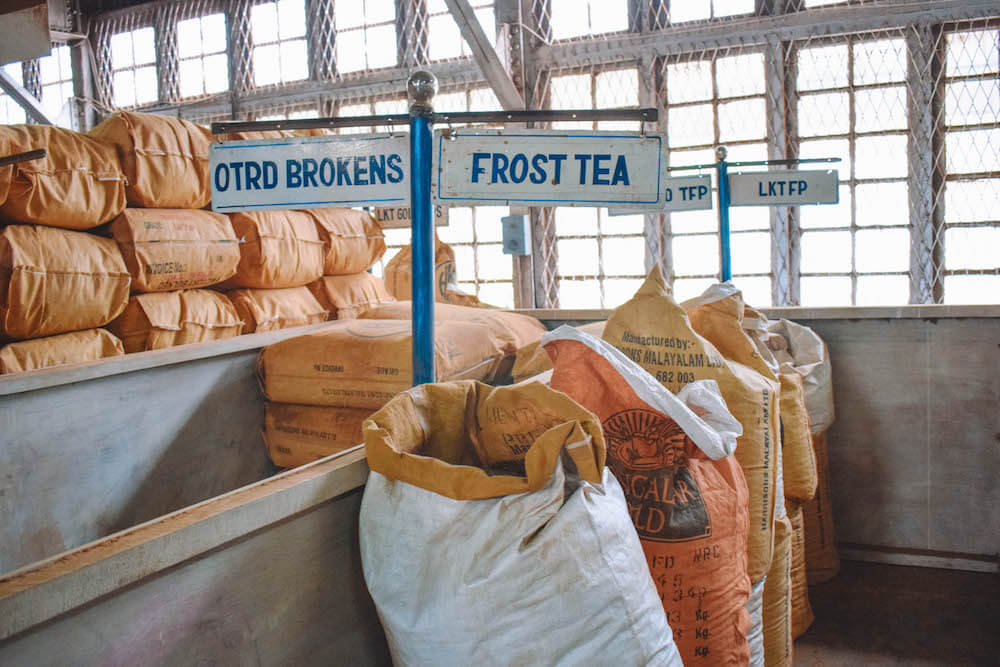 Different types of teas sorted in sacks at Lockhart tea factory