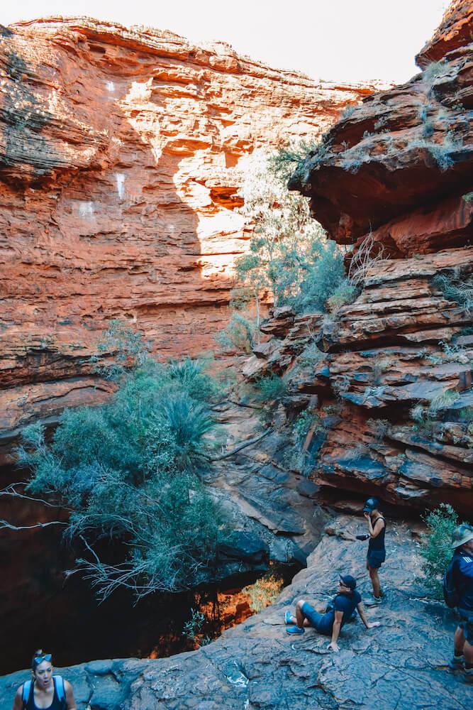 "The ""Garden of Eden"" in King's Canyon, Australia"