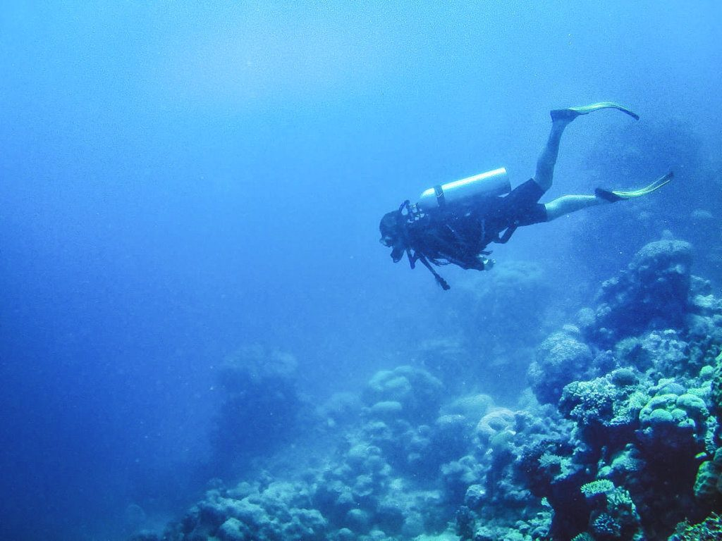 Scuba diving at the Great Barrier Reef, photo by The Lost Passport