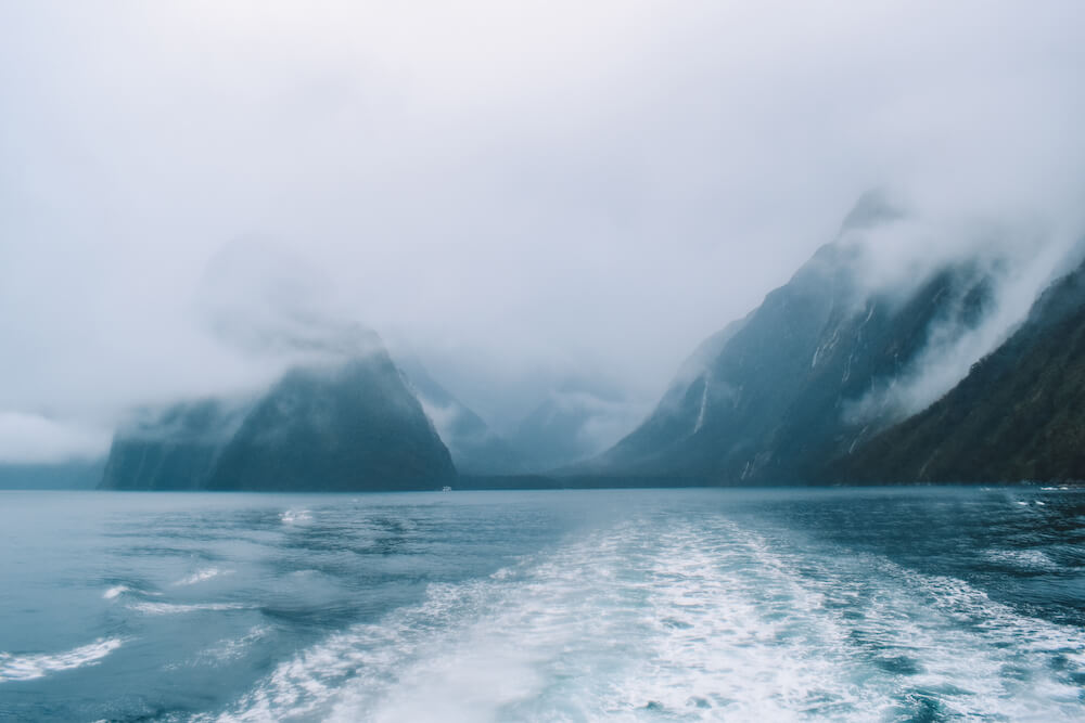Cruising in Milford Sound, New Zealand