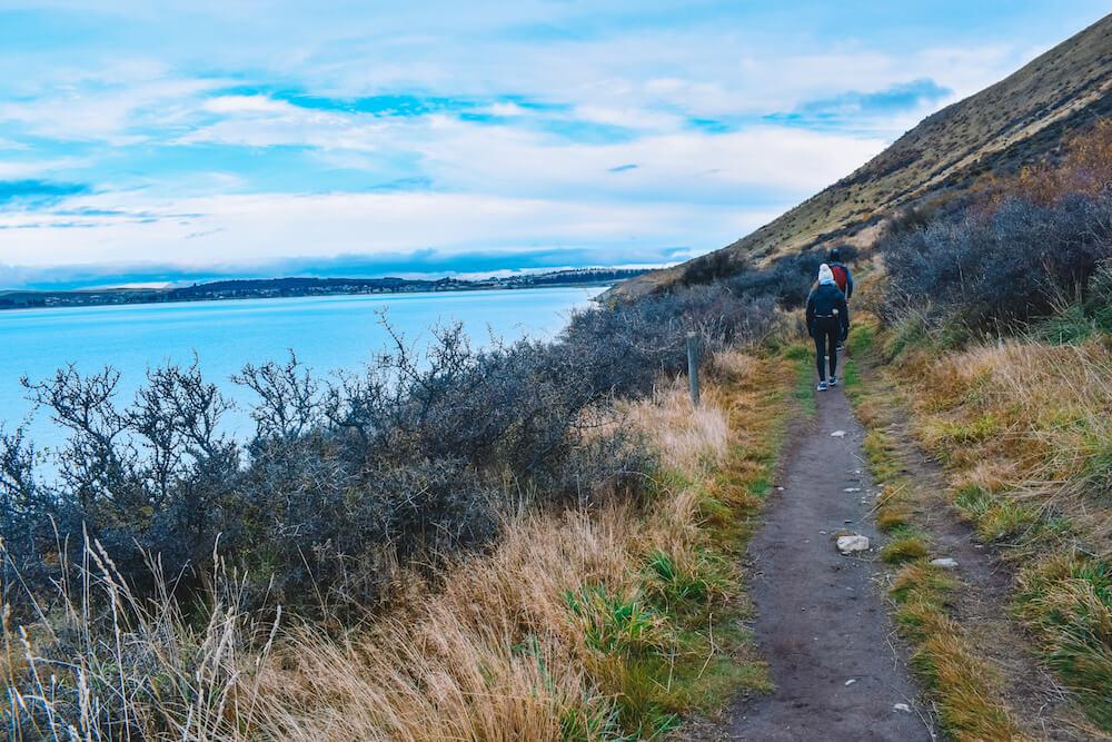Hiking the Mt John via lakeshore hiking trail in Lake Tekapo, New Zealand