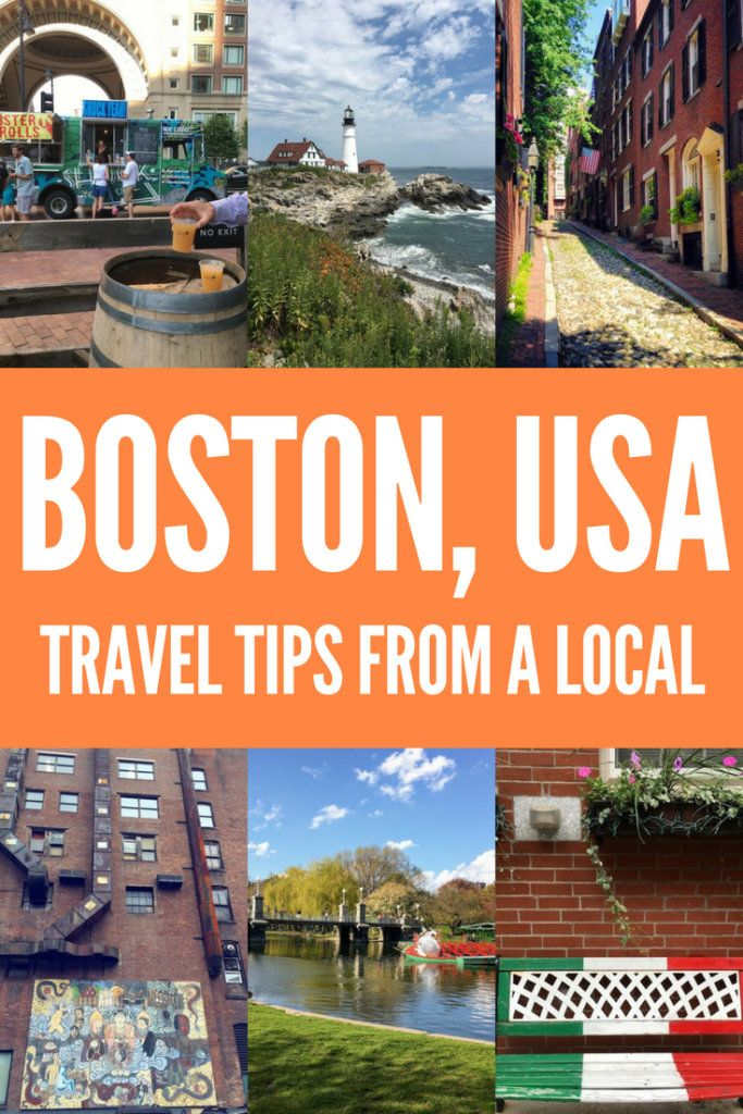 Planning a trip to Boston? Find out everything you need to know with this local's travel guide. Including the best places to eat, typical activities locals do in their free time, off the beaten track places to discover and much more! #boston #unitedstatesofamerica #usa #likealocal #traveladvice #travellikealocal