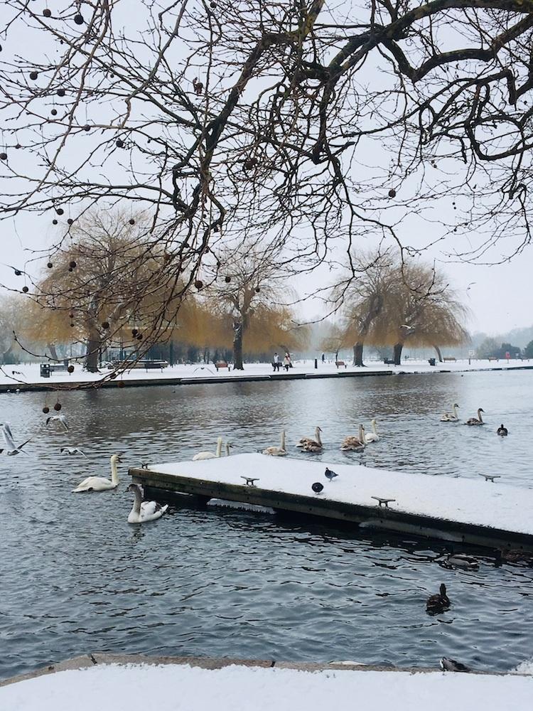 River Avon, photo by Call Me Liz