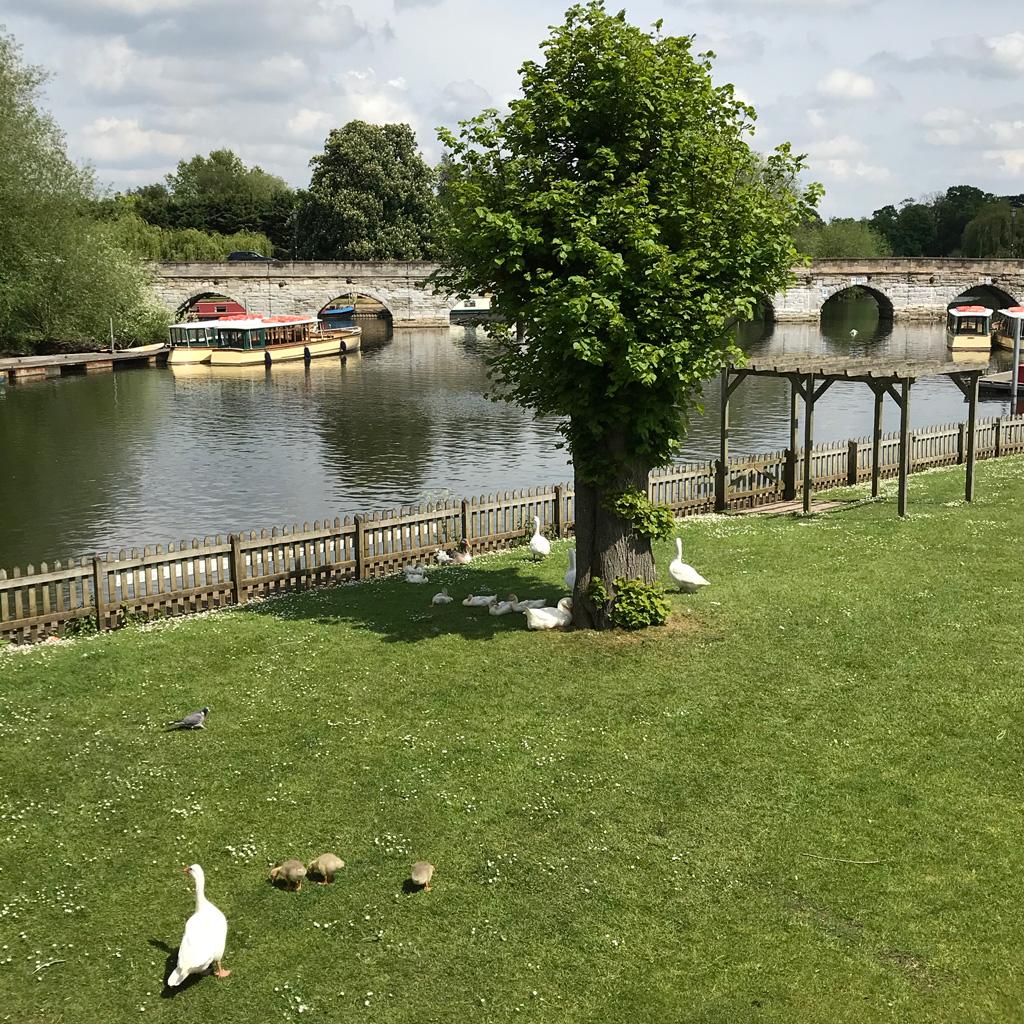 Bancroft Gardens in Stratford Upo Avon - photo by Call Me Liz