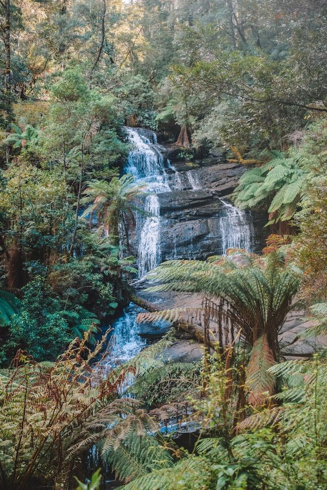 Triplet Falls in the Great Otway National Park, Australia