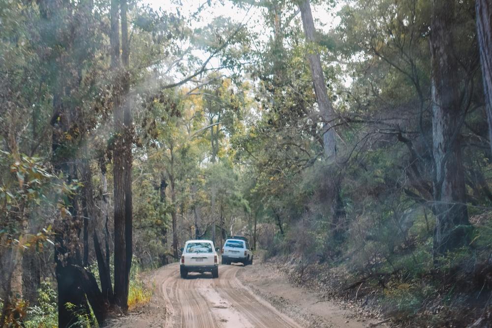 Driving on Fraser Island, Australia