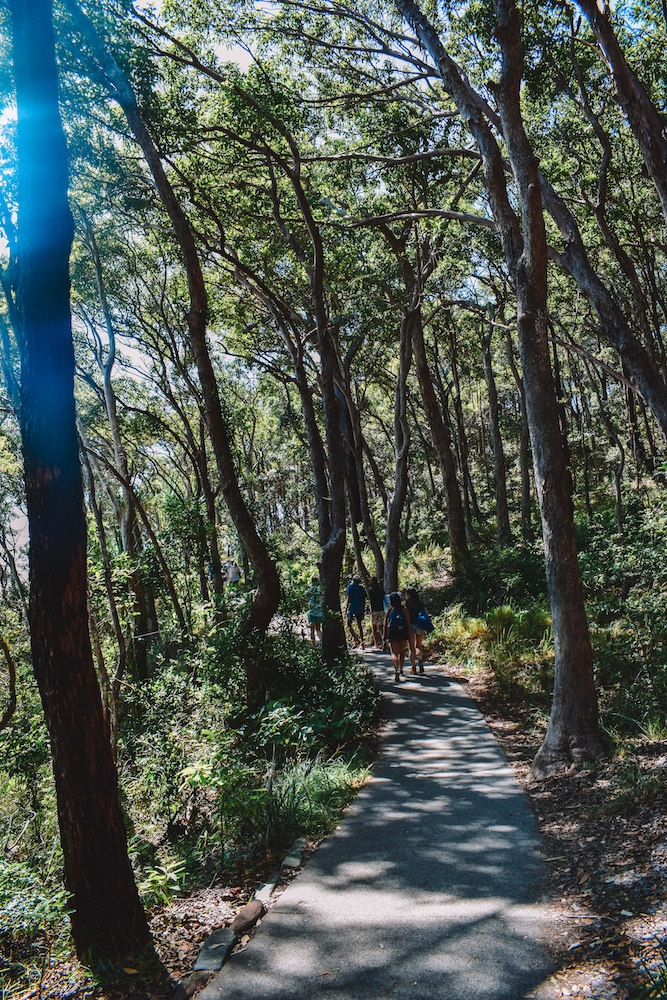 The start of the Coastal Walk in Noosa National Park, Australia
