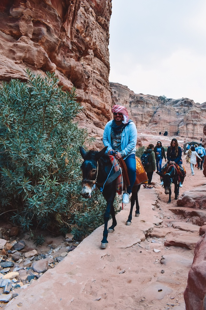 Tourists using donkeys to go up to the Monastery of Petra, Jordan