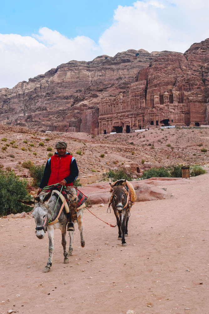 """""""Bedouin ferraris"""" as the local guides refer to the donkeys in Petra, Jordan"""