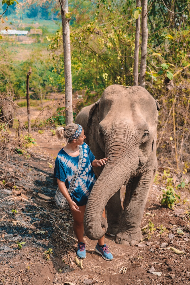 Walking in the forest with one of the rescued elephants at Elephant Green Hill, Chiang Mai