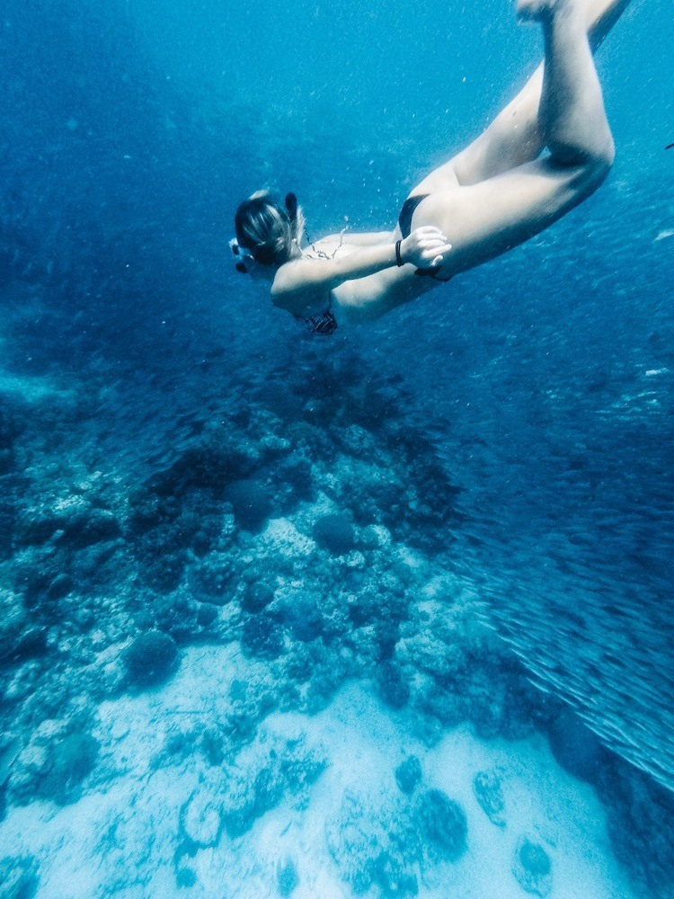 Swimming with sardines in Moalboal, Cebu