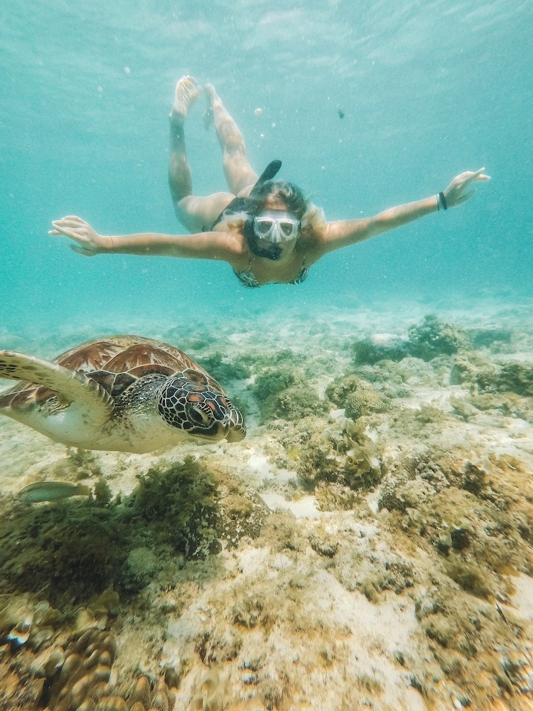 Snorkelling with turtles in Moalboal in Cebu Island