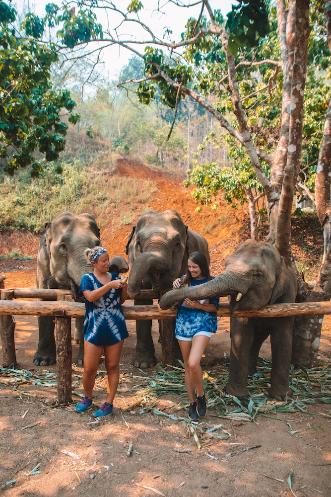 """Two girls feeding three elephants at Elephant Green Hill, part of the Elephant Nature Park """"saddle-off"""" project, in Chiang Mai, Thailand - a must see in any Thailand 2 week itinerary"""