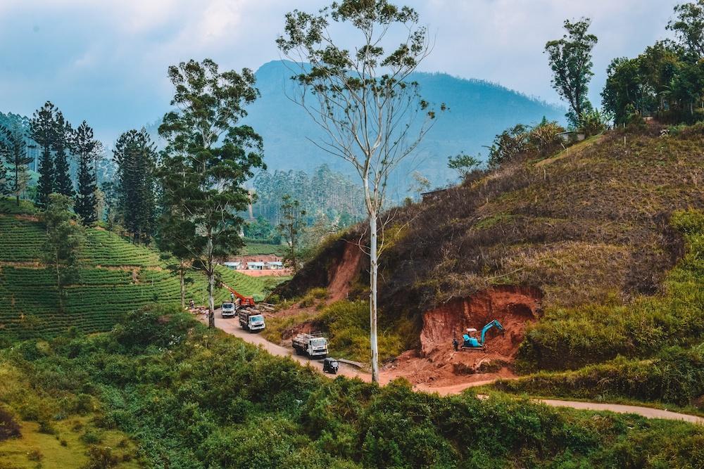 Tea plantation views during our Kandy to Ella train journey