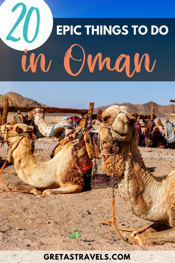 """Camels in the desert in Oman with text overlay saying """"20 epic things to do in Oman"""""""
