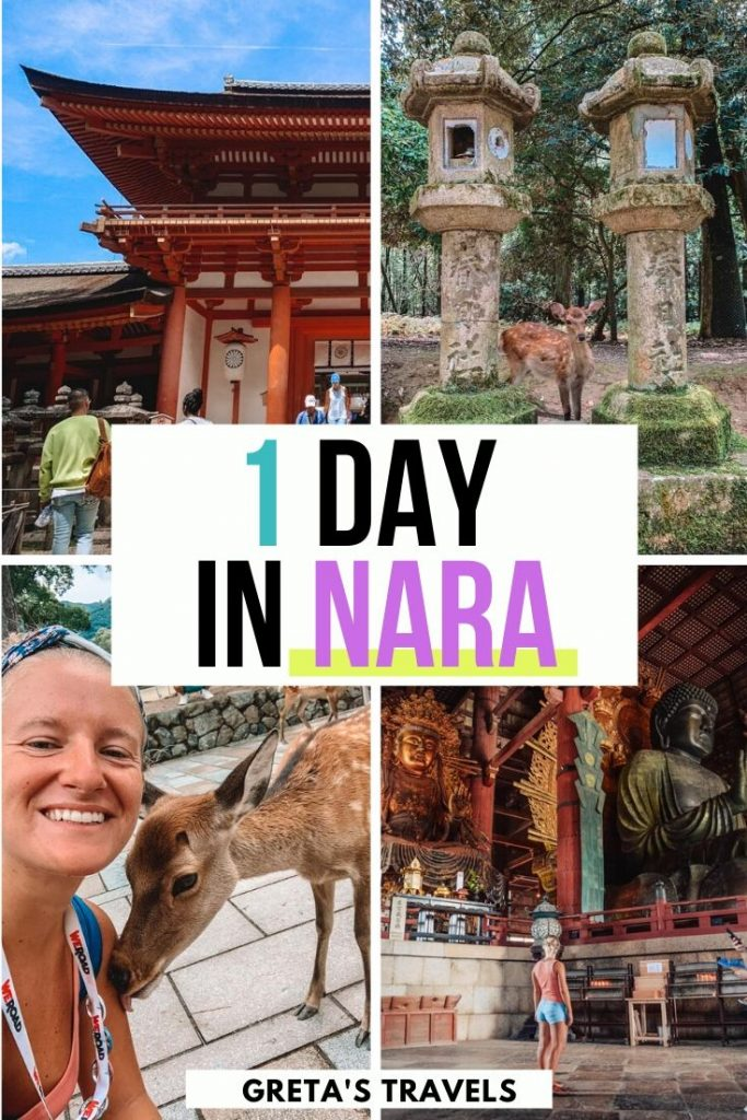 """Photo collage of wild reindeer in Nara and the inside of Todaiji temple in Nara, japan, with text overlay saying """"1 day in Nara"""""""