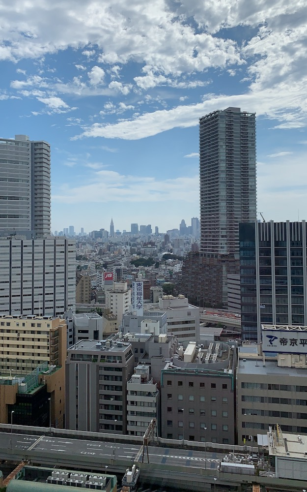 The view from my window at the Sunshine City Prince Hotel in Toshima City