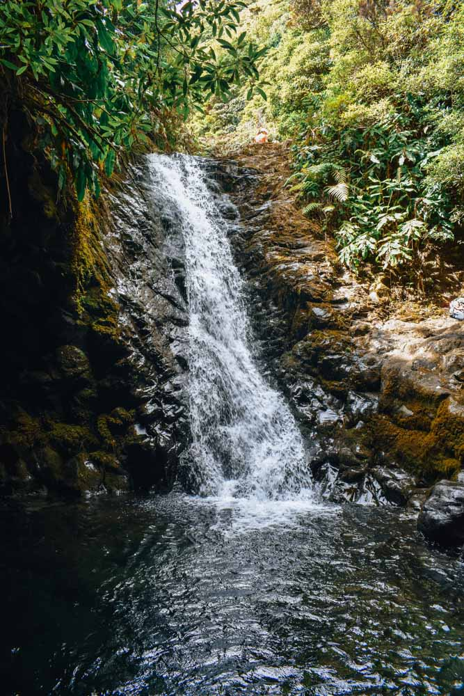 The waterfall you can swim in during your hike of Caldeira de Santo Cristo in Sao Jorge island