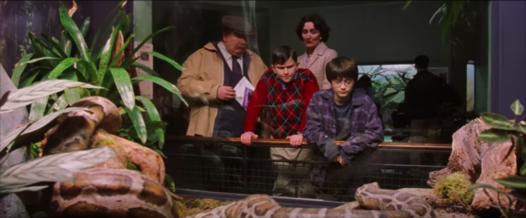 Harry Potter and the Dursleys at London Zoo in Harry Potter and the Philosophers Stone