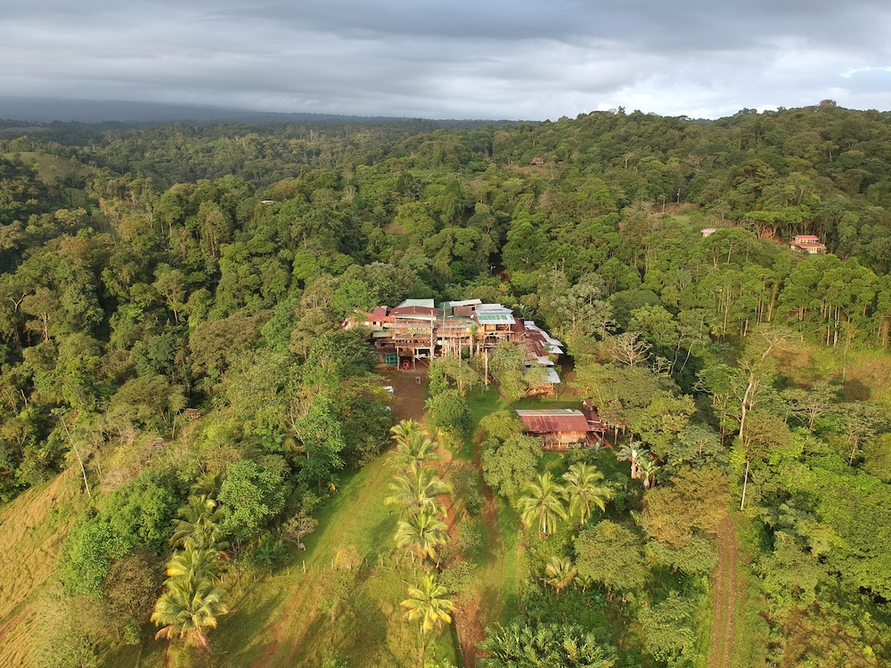Drone shot of Mirador Prendas - in the middle of the jungle!