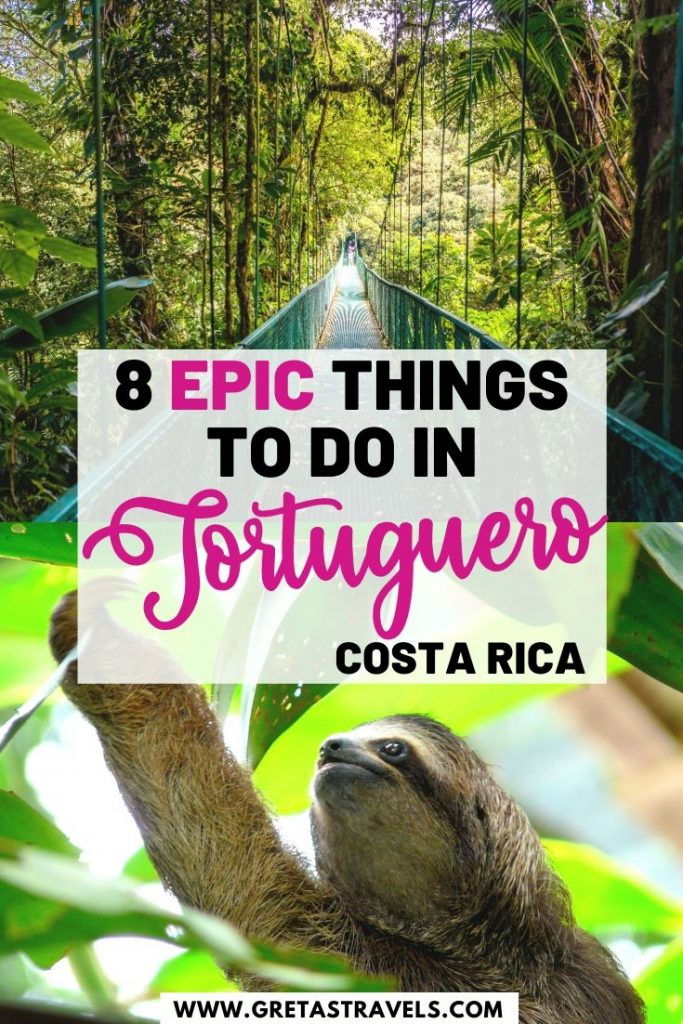 """Collage of a sloth and a hanging bridge in Costa Rica with text overlay saying """"8 epic things to do in Tortuguero, Costa Rica"""""""