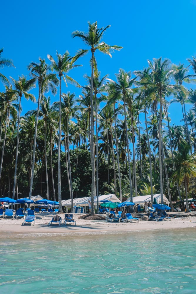 Palm trees and sunbeds on Isla Tortuga, Costa Rica