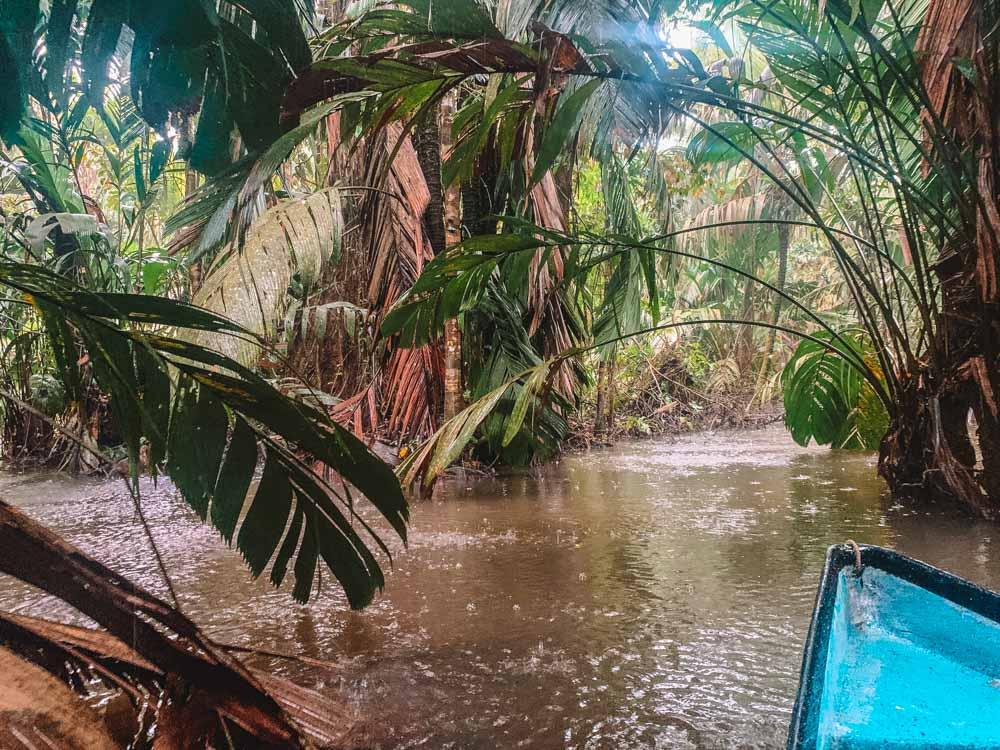 Canoe tour in Tortuguero National Park