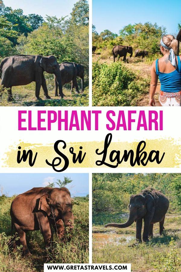 "Collage of elephants in Udawalawe National Park and text overlay saying ""elephant safari in Sri Lanka"""