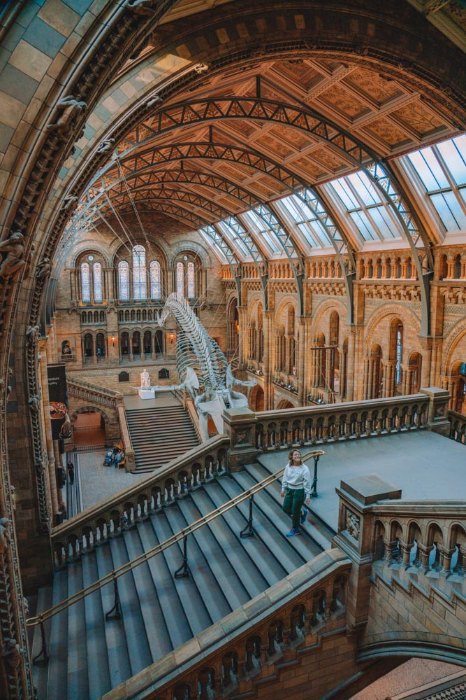 The inside of the Natural History Museum in London