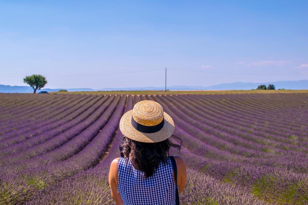Exploring the lavender fields in France - Photo by Lugdivine BORELLO on Scopio