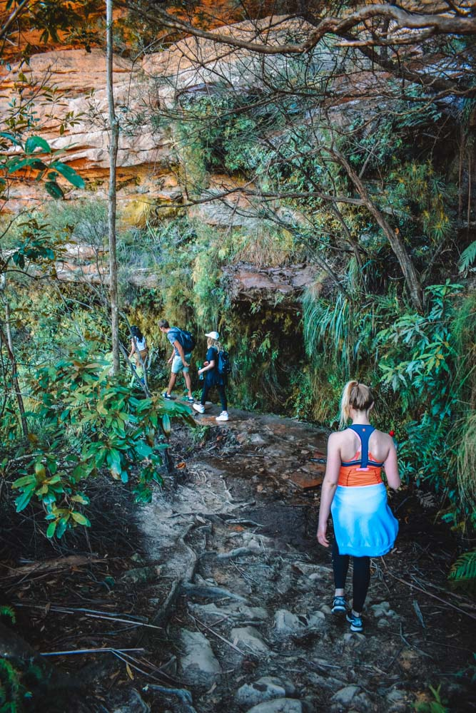 Hiking in Blue Mountains National Park