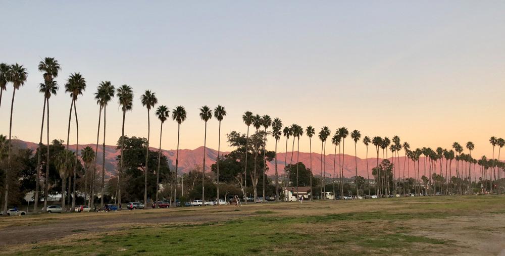 The palm tree skyline in Santa Barbara - photo by Passports and Preemies