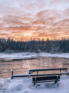 Beautiful landscapes you can see in Lapland in winter